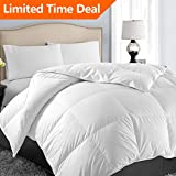 EASELAND King Soft Quilted Down Alternative✅Summer Cooling Comforter Luxury❤Hotel Collection Reversible Duvet Insert✅with Corner Ties,Warm Fluffy Hypoallergenic for All Season,White,90 by 102 Inches