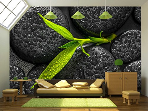 Top Down Closeup Beautiful Spa Composition of Green Branch Bamboo on Zen Basalt Stones