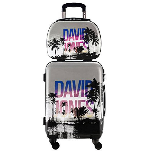 DAVIDJONES 2 Piece Hardside Upright Spinner Luggage Set-PALMIER