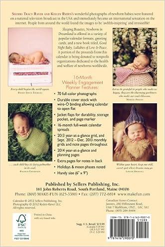 Hot Sale 2017 Sleeping Beauties Newborns In Dreamland 2013