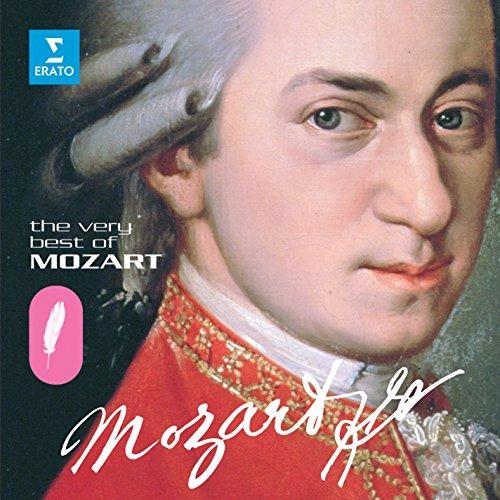 (String Quartet No. 14 in G major K387: IV. Molto allegro)