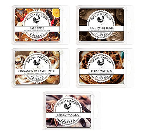Fall Spice 5 Mix Pack. USA Made Scented Tarts Wax Melts Tart. 100% All Natural Soy Wax Melts Mix Fall Spice 5 Pack . Similar to Yankee Candle Tarts or Scentsy Bars (Scented Soy Wax Melts Tarts)