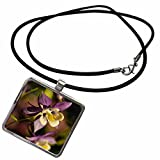 3dRose Danita Delimont - Gardens - Schreiners Iris Gardens, Keizer, Oregon, USA - US38 RBR0451 - Rick A Brown - Necklace With Rectangle Pendant (ncl_146036_1) offers