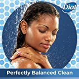 Dial Body Wash, Spring Water, 21 Ounce