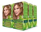 Naturtint Permanent Hair Color - 7G Golden Blonde, 5.6 fl oz (6-pack)