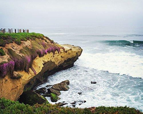 - La Jolla Cliffs and Purple Flowers - Fine Art Landscape Print
