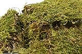 Set of 2 Bags of 4-oz Natural Sheet Moss! Perfect