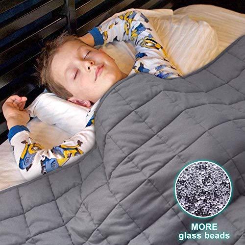 BoxLegend Premium Weighted Blanket