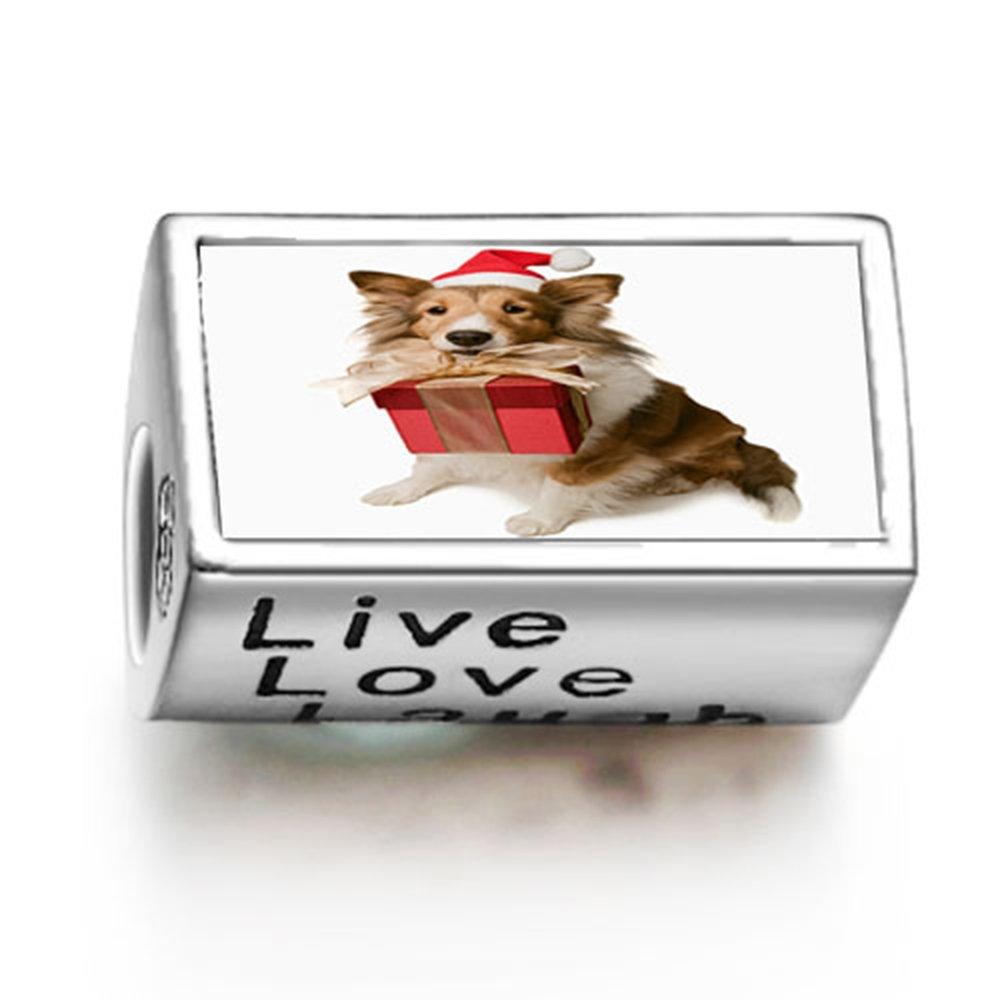 loyallove Weihnachtshund mit Geschenk-Box Foto Live Love Laugh ...