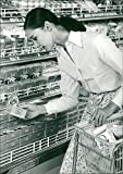 Vintage photo of Young woman takes a look at the latest news in the dairy department at one of Tokyo's supermarkets