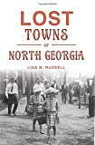 Lost Towns of North Georgia (Hidden History)