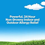 Claritin 24 Hour, Non-Drowsy Indoor and Outdoor