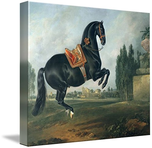 Imagekind Wall Art Print Entitled A Black Horse Performing The Courbette by The Fine Art Masters | 9 x 8