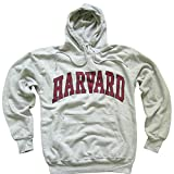 Harvard University Hoodie Sweatshirt Arched Block Grey - S