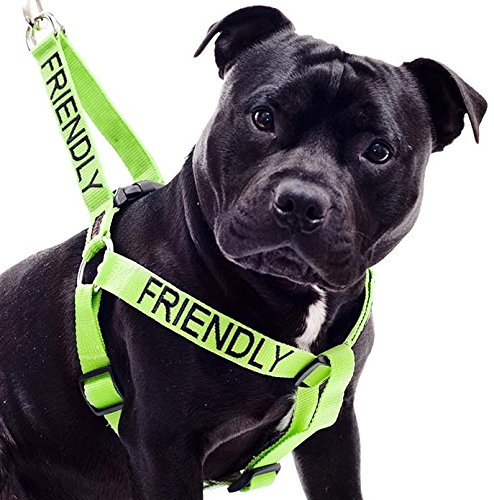 FRIENDLY Green Color Coded Non-pull Dog Harness (Known As Friendly) PREVENTS Accidents By Warning Others of Your Dog in Advance!
