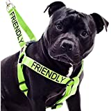 """""""FRIENDLY"""" Green Color Coded Nylon Non Pull Dog harness (KNOWN AS FRIENDLY) PREVENTS Dog Accidents By Warning Others Of Your Dog In Advance! Strong As Leather & Chain by Dexil"""