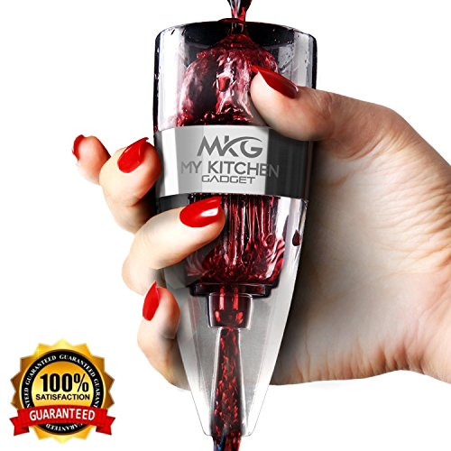 Wine Aerator Pourer Decanter Aerating Wine Pourer with Luxurious Gift Box Silicone Non Drip Stand & Velvet Travel Pouch (Grapevine Wine Stopper)
