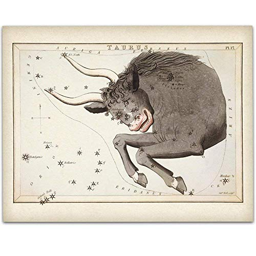 Antique Zodiac Taurus Constellation Plate - 11x14 Unframed Art Print - Great Home Decor or Gift Under $15 to Astrology Enthusiasts