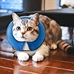 MorTime Protective Inflatable Collar for Dogs and Cats Adjustable Soft Pet Recovery Collar - Does Not Block Vision 8