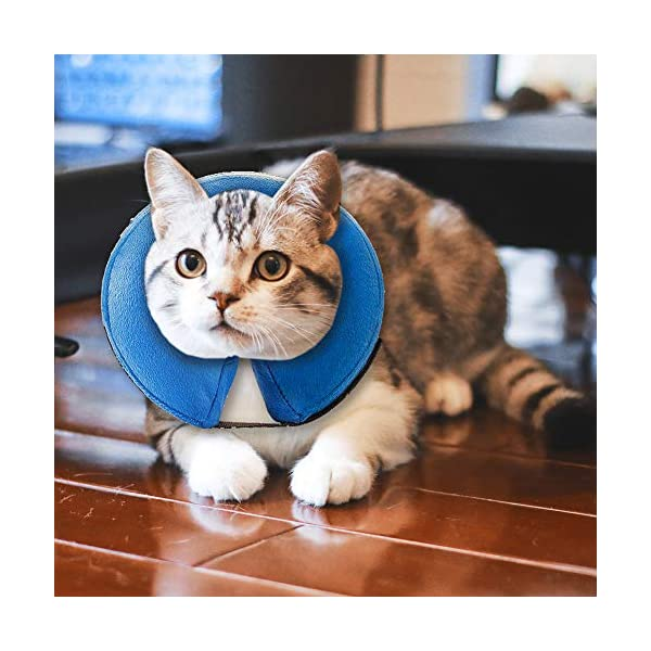 MorTime Protective Inflatable Collar for Dogs and Cats Adjustable Soft Pet Recovery Collar - Does Not Block Vision 1