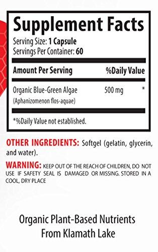 Klamath blue green algae 500 - BLUE GREEN ALGAE ORGANIC 500 MG - improve energy (6 Bottles) by Healthy Supplements LLC (Image #1)