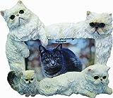 E&S Pets 35297-8 Large Cat Frames