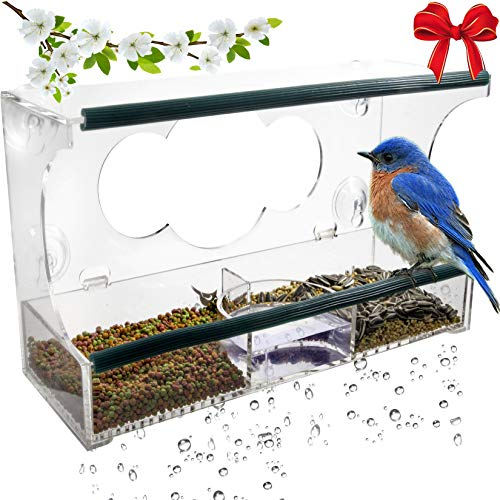 Birdious Deluxe Window Bird Feeder with Strong Suction Cups & Seed Tray, Enjoy Clear View Wild Birds. Large Squirrel Proof Birdfeeder for Outdoors Mounted on Outside Glass. Best Gift Idea