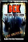 img - for BEK (Black Eyed Kids Phenomenon): The Boy At The Door book / textbook / text book