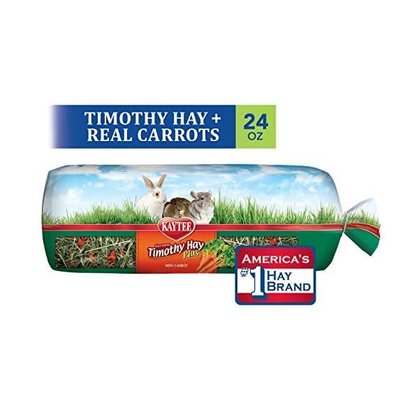 Kaytee Timothy Hay for Rabbits & Small Animals, Assorted Flavors, 24 oz Bag 1