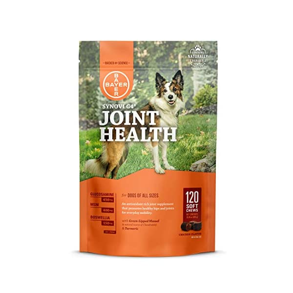 Bayer Synovi G4 Soft Chews Glucosamine Joint Supplement for Dogs, 120 count
