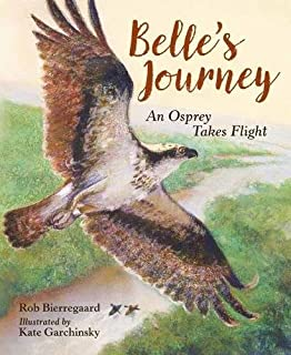 Book Cover: Belle's Journey: An Osprey Takes Flight