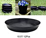 Hydro Plus Pant Pot Saucer 10.5'' 12-pack Flower Plant Container Saucers Hydroponic Indoor Outdoor Gardening Plants Growing Pallet Trays (10.5'' 12-pack)