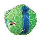 KONG Funzler Dog Toy, Medium, Green/Blue