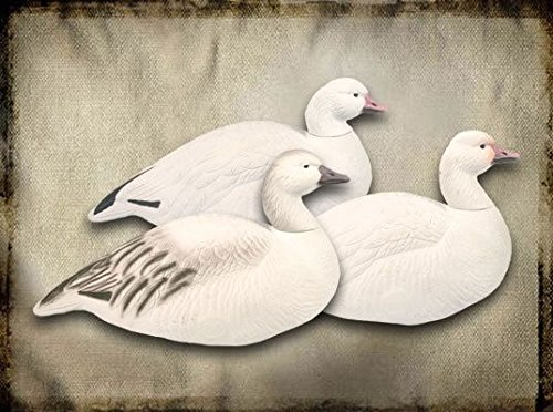 - Final Approach Last Pass High Definition Blue Goose Upright Shells Decoy, 12 Pack