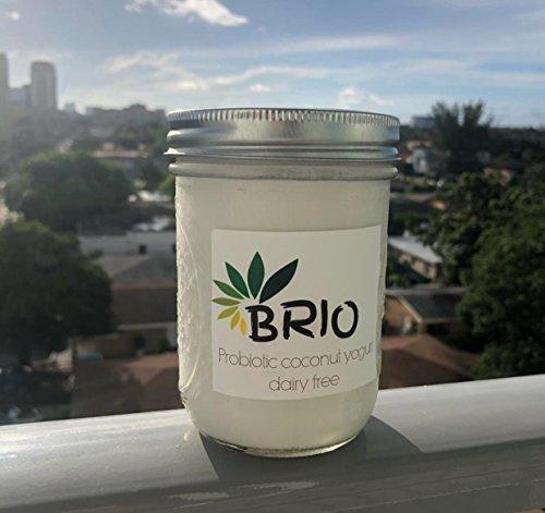 Brio Organics, Dairy Free Cultured Probiotic Yogurt, Vegan, Coconut Based 5oz (PACK 12)