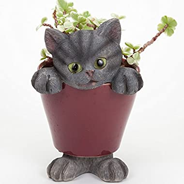 Bits and Pieces - Cat in the Planter Home Décor Urn -The Cat in a Planter Is a Plant Pot Accessory - A Wonderful Gift for Any Indoor Plant