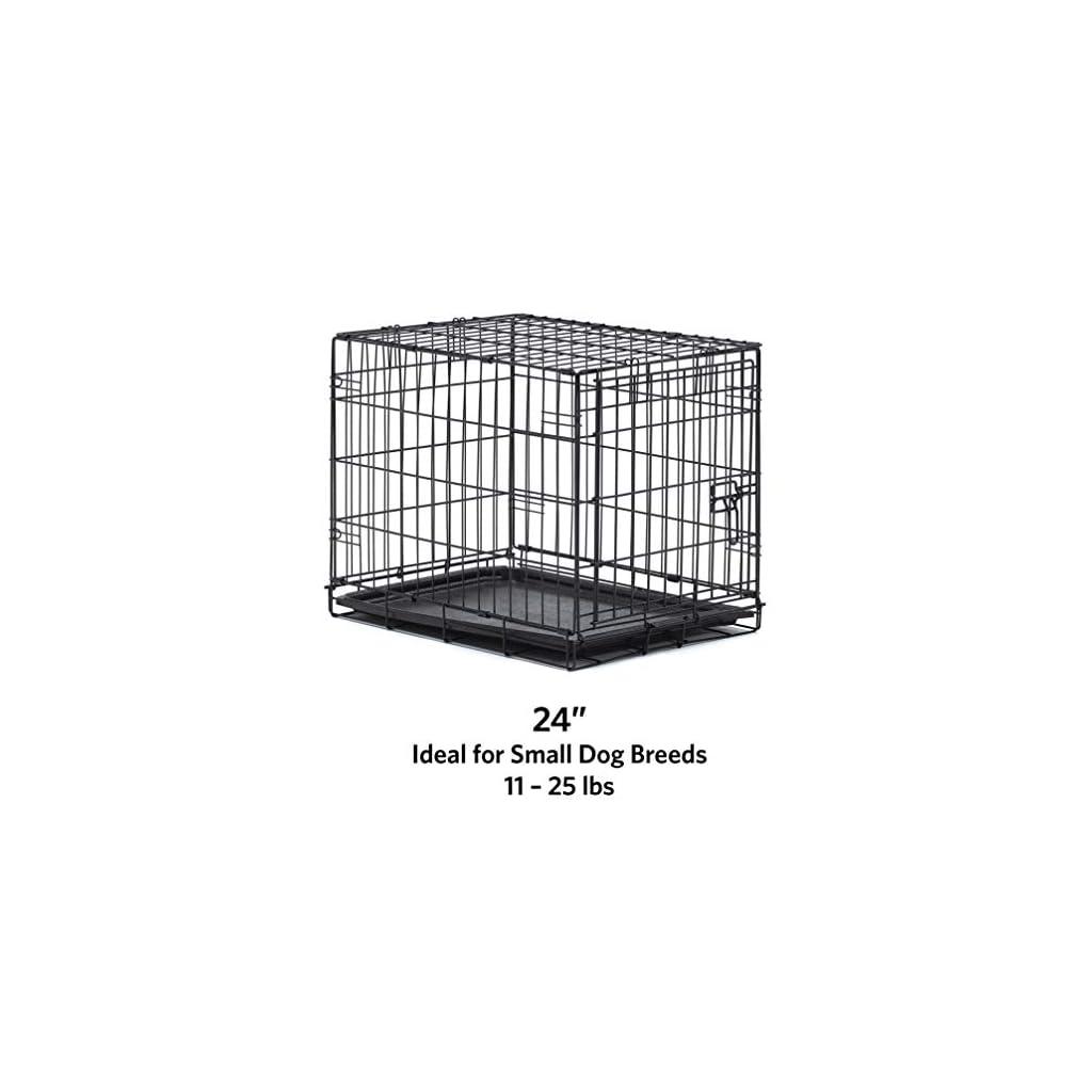 New World Folding Metal Dog Crate Single Door Amp Double