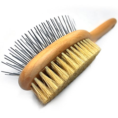 Paws Pamper Boar Bristle & Pin Brush for Dogs and Cats - Beechwood Handle (Cappuccino White)