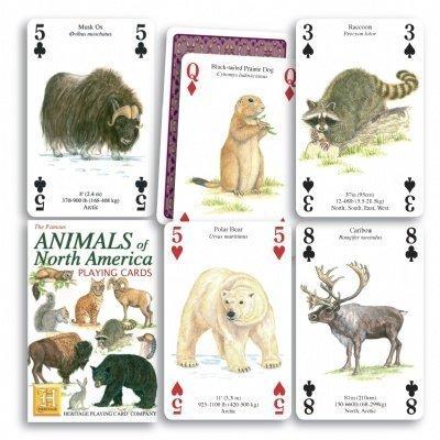 north america cards - 3