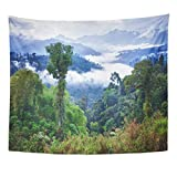 Emvency Tapestry Green Forest Rainforest Ecuador Latin America Jungle Wildlife Mountain Home Decor Wall Hanging for Living Room Bedroom Dorm 50x60 Inches