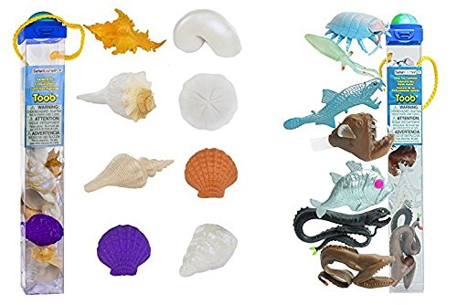 Deep Seashell (Safari Ltd TOOB 2 Pk - Seashells and Deep Sea Creatures)