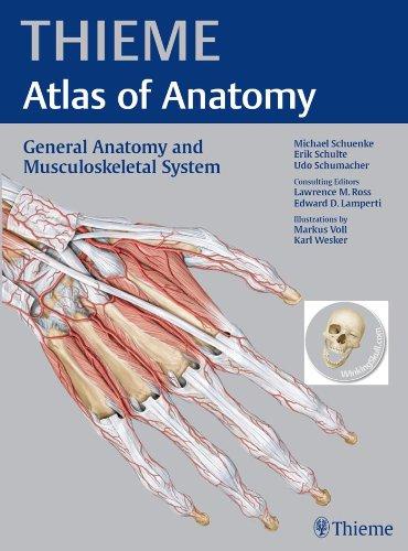 Thieme Atlas of Anatomy General Anatomy and Musculoskeletal System (1st 2010) [Schuenke, Schulte & Schumacher]