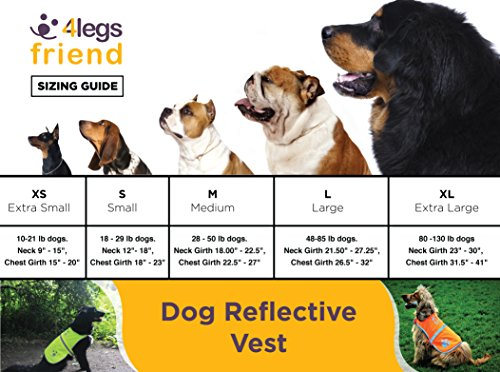 Image of Dog Safety Reflective Vest (5 Sizes,X-Large) - High Visibility for Outdoor Activity Day and Night, Keep Your Dog Visible, Safe from Cars & Hunting Accidents | by 4Legs Friend