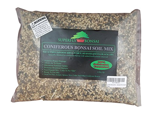 Yew Bonsai (Conifer Bonsai Soil Mix - Professional Sifted and Ready To Use Tree Potting Blend In Easy Zip Bag - Kiryu, Akadama, Black Lava, Pumice & Charcoal (6 Dry Quart))