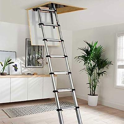 Youngman 301000 2,6 m telescópico de aluminio escalera para desván: Amazon.es: Bricolaje y herramientas