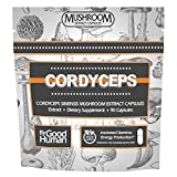 Pure Cordyceps Mushroom | 90 Capsules | Daily Supplement for Natural Energy and Stamina. Support Athletic Activity and Endurance Review