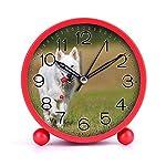 Cute Color Alarm Clock, Round Metal Desk Clock Portable Clocks with Night Light House Decorations -520.swiss-shepherd-dog-dog-white-animal-46523 (Black) 4