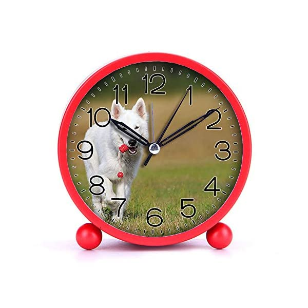 Cute Color Alarm Clock, Round Metal Desk Clock Portable Clocks with Night Light House Decorations -520.swiss-shepherd-dog-dog-white-animal-46523 (Black) 1
