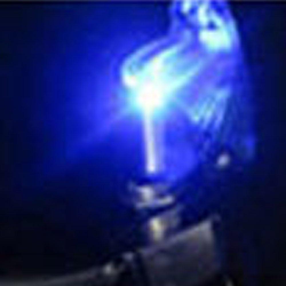 Qiorange 5X Kill Switch Auto Lastwagen KFZ Boot 12V 20A Violett Look LED Kippschalter Schalter LED Licht Schalter EIN//AUS