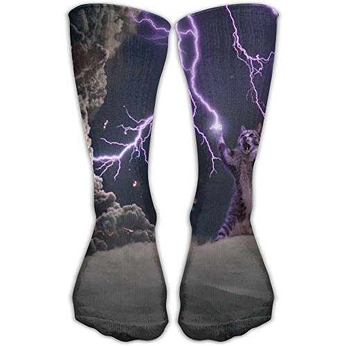 Picture of a Cats Storm Lightning Fashion Novelty